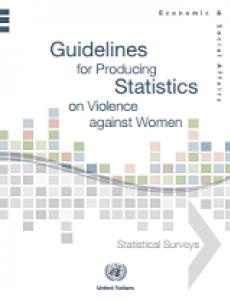 Portada directrices para la producción de estadísticas sobre la violencia contra la mujer