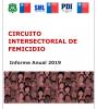 Informe Circuito Intersectorial de Femicidio, Año 2019